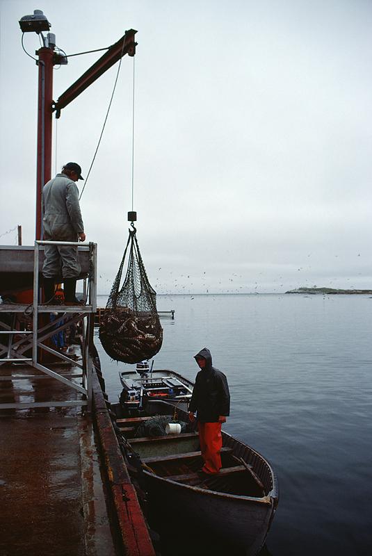 Fisher-24.jpg